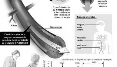 hipertension_arterial