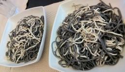 pasta-en-blanco-y-negro-con-gulas-al-ajillo