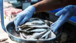 boquerones en la pescadería del mercado